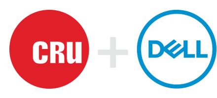 dell_cru_logos
